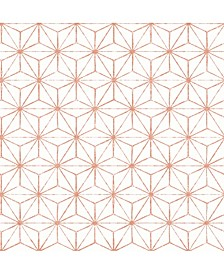 "Orion Geometric Wallpaper - 396"" x 20.5"" x 0.025"""