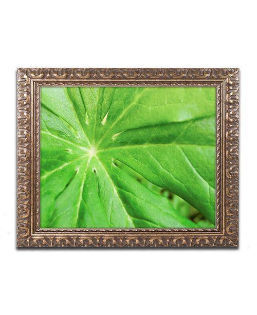 """Trademark Global PIPA Fine Art 'Peaceful Greenery' Ornate Framed Art - 11"""" x 14"""""""