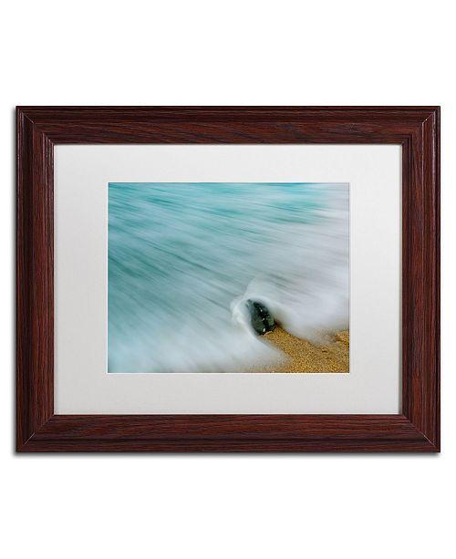"Trademark Global PIPA Fine Art 'Whelk Seashell and Misty Wave' Matted Framed Art - 11"" x 14"""