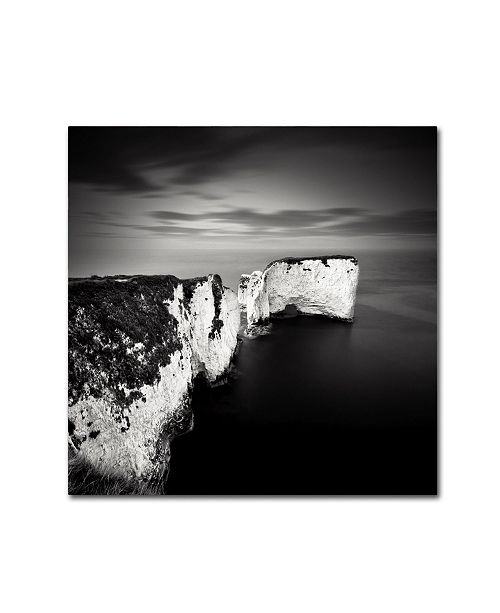 "Trademark Global Rob Cherry 'Old Harry' Canvas Art - 14"" x 14"""