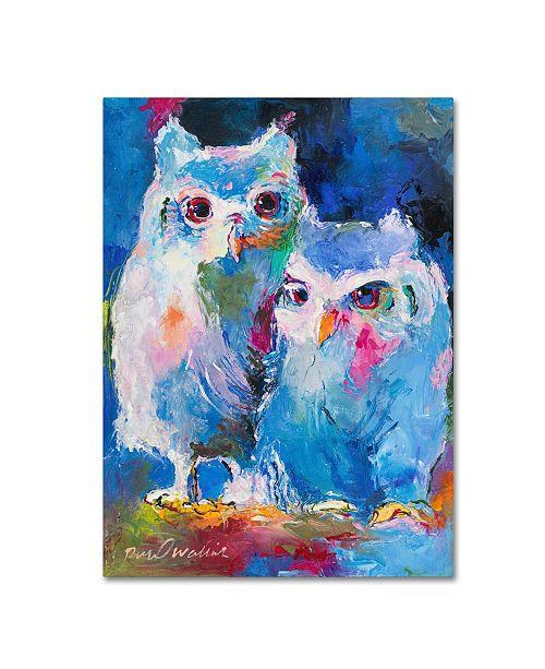 "Trademark Global Richard Wallich 'Owls' Canvas Art - 14"" x 19"""