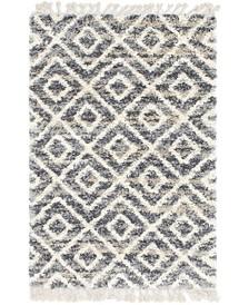 Lochcort Shag Loc2 Gray 4' x 6' Area Rug