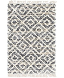 Bridgeport Home Lochcort Shag Loc2 Gray 4' x 6' Area Rug