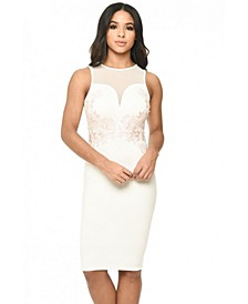 Sheer Top Bodycon Dress with Lace Detail