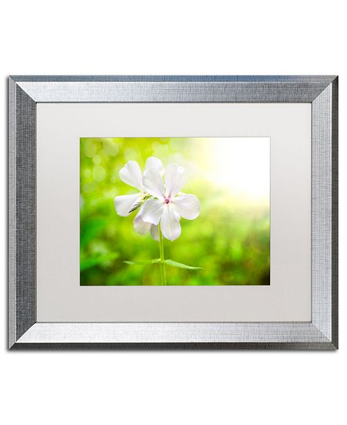 "Trademark Global PIPA Fine Art 'Beauty of the Forest Floor' Matted Framed Art - 16"" x 20"""