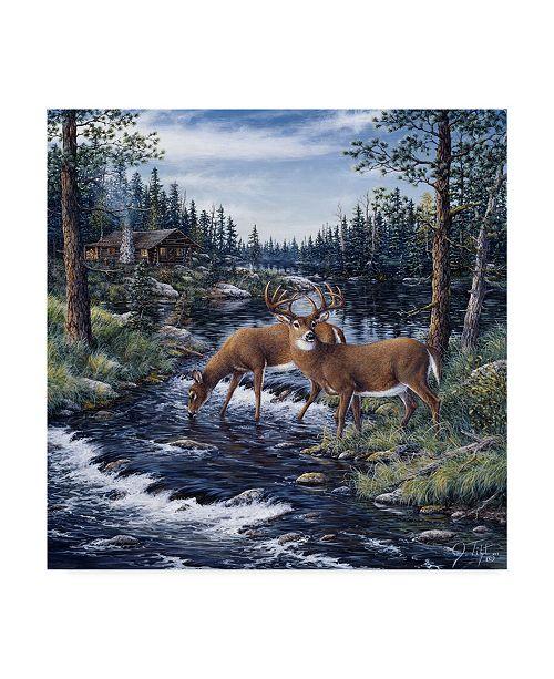 "Trademark Global Jeff Tift 'Peaceful Morning' Canvas Art - 18"" x 18"""