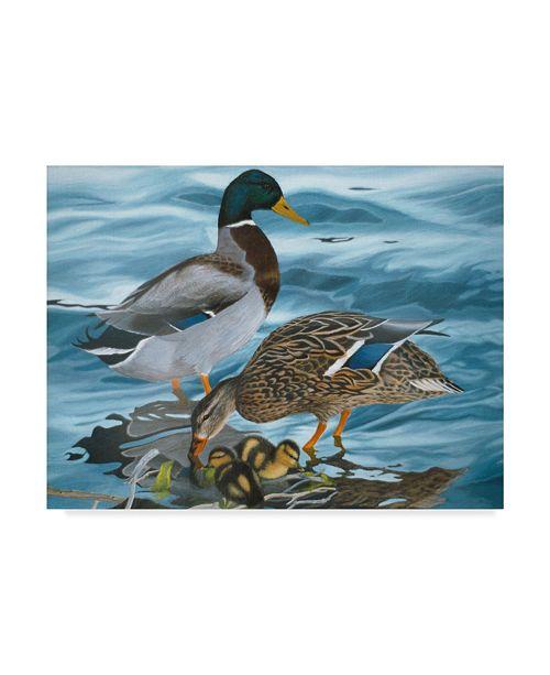 "Trademark Global Rusty Frentner 'Mallard Family' Canvas Art - 18"" x 24"""