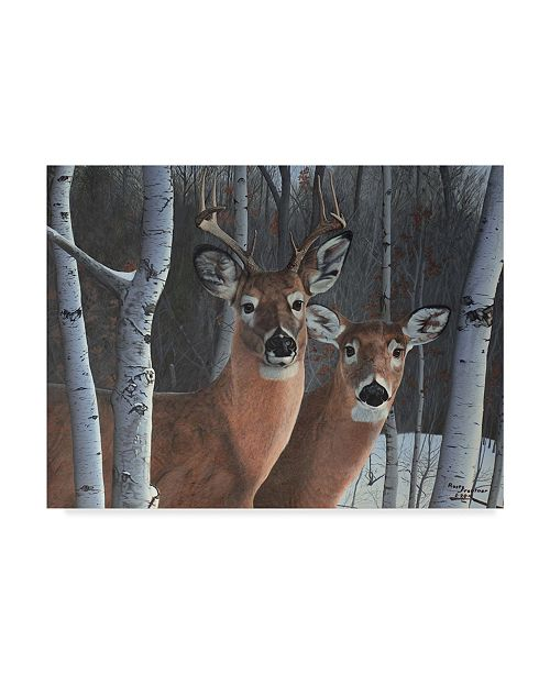 "Trademark Global Rusty Frentner 'Deer Magic' Canvas Art - 18"" x 24"""