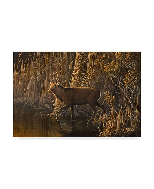 "Trademark Global Wilhelm Goebel 'Evening Rounds Sika Deer' Canvas Art - 16"" x 24"""