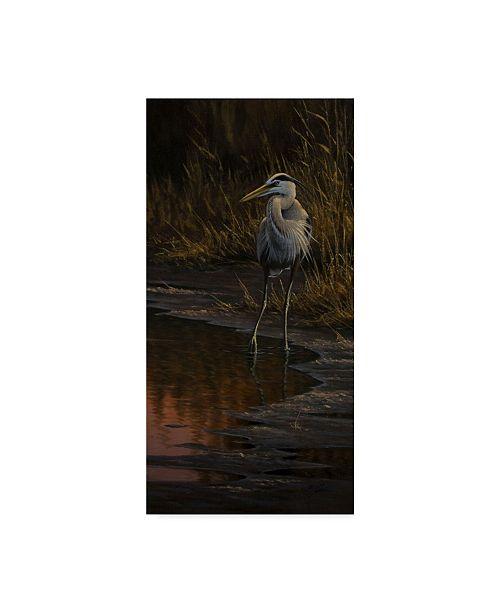 "Trademark Global Wilhelm Goebel 'The Edge Great Blue Heron' Canvas Art - 16"" x 32"""