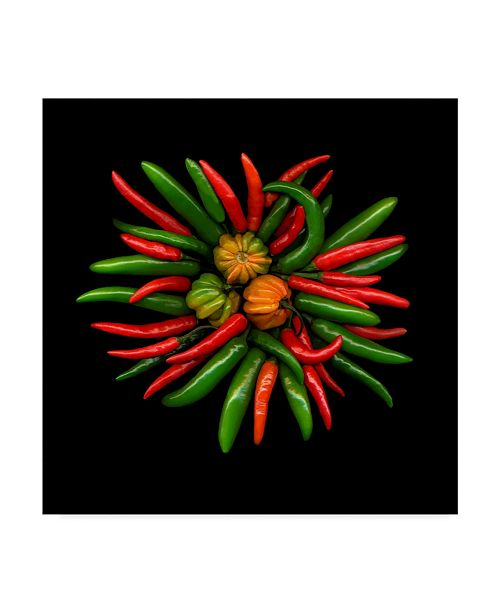 "Trademark Global Susan S. Barmon 'Hot Peppers 1' Canvas Art - 18"" x 18"""