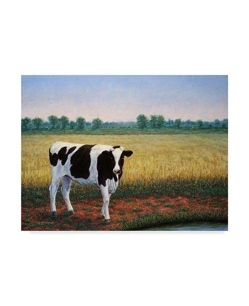 "Trademark Global James W. Johnson 'Happy Holstein' Canvas Art - 24"" x 18"""