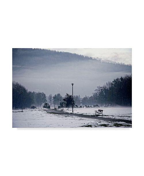 "Trademark Global Incredi 'Dark Winter Landscape' Canvas Art - 19"" x 12"""