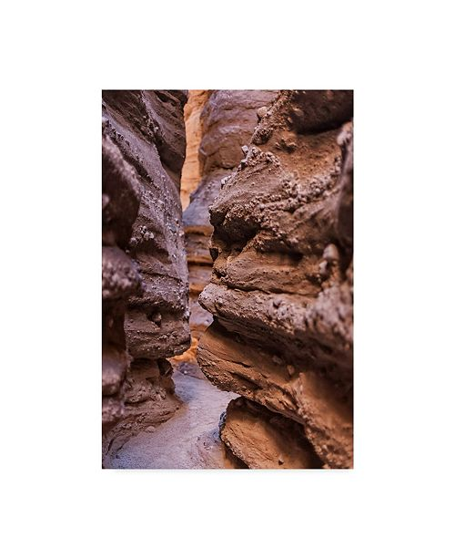 "Trademark Global Janice Sullivan 'Canyon Hike' Canvas Art - 16"" x 24"""