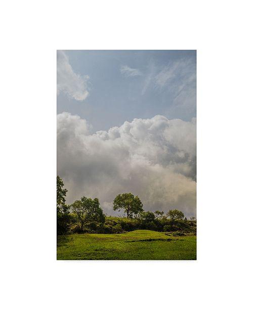 "Trademark Global Jason Matias 'Grassy Mountain Top In The Sky' Canvas Art - 12"" x 19"""