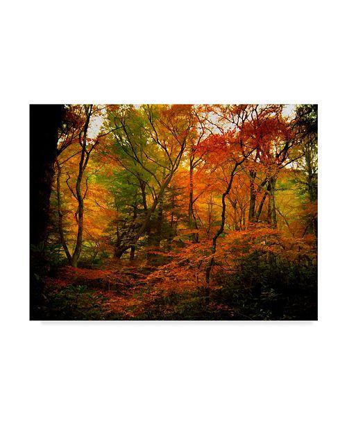 """Trademark Global J.D. Mcfarlan 'Deep Woods' Canvas Art - 24"""" x 18"""""""