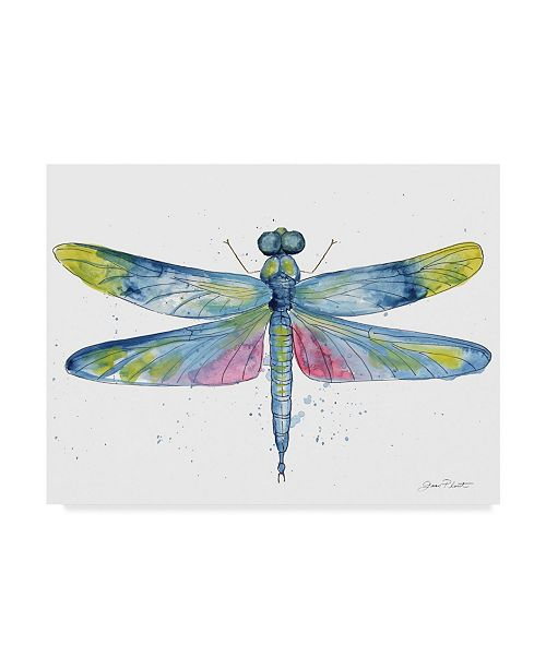 """Trademark Global Jean Plout 'Dragonfly Bliss 6' Canvas Art - 24"""" x 18"""""""