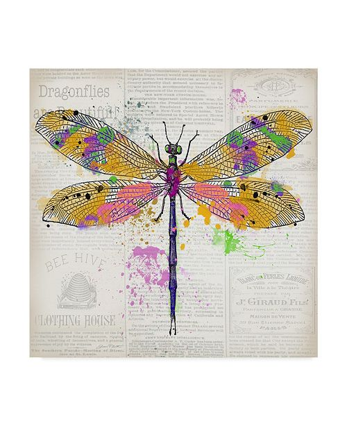 "Trademark Global Jean Plout 'Dragonfly On Newsprint 3' Canvas Art - 24"" x 24"""