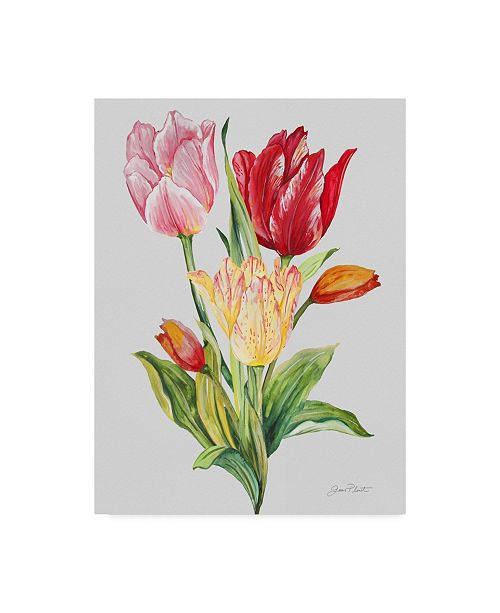 "Trademark Global Jean Plout 'Botanicals 11' Canvas Art - 14"" x 19"""
