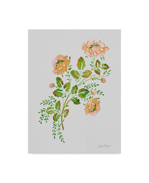"Trademark Global Jean Plout 'Wild Rose Peach 1' Canvas Art - 14"" x 19"""