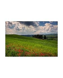 "Maciej Duczynski 'Rustic Italy 1' Canvas Art - 19"" x 12"""