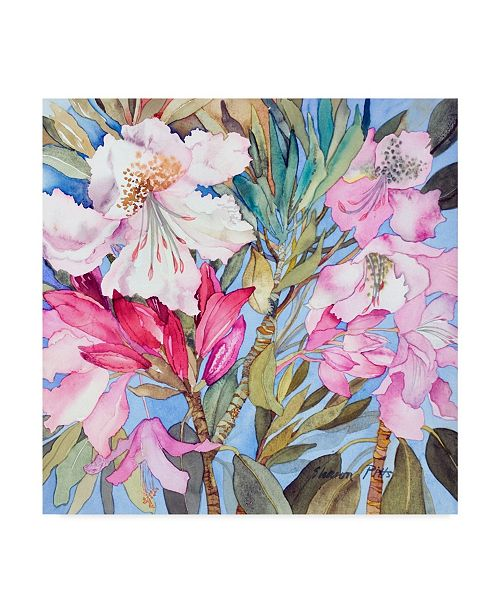 """Trademark Global Sharon Pitts 'Rhododendron Flowers' Canvas Art - 14"""" x 14"""""""