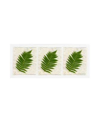 "Kathie McCurdy 'Ferns Finish' Canvas Art - 19"" x 6"""