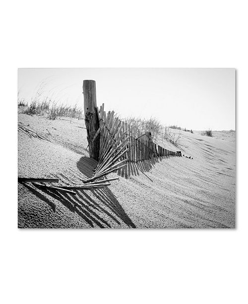 "Trademark Global PIPA Fine Art 'High Key Dunes' Canvas Art - 35"" x 47"""