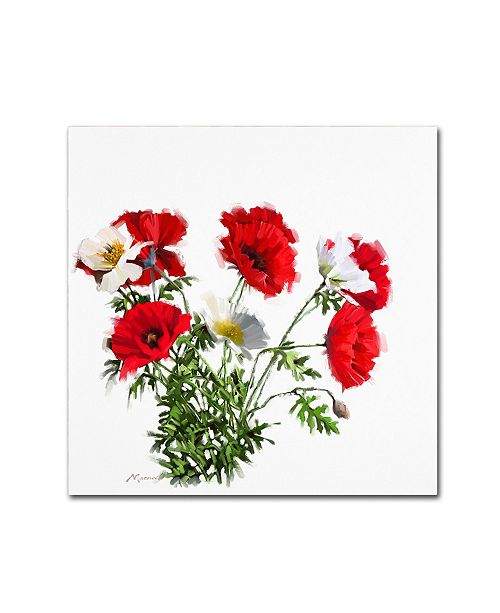 "Trademark Global The Macneil Studio 'Poppies' Canvas Art - 35"" x 35"""