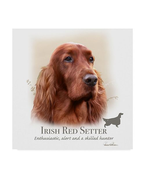 "Trademark Global Howard Robinson 'Irish Red Setter' Canvas Art - 35"" x 35"""