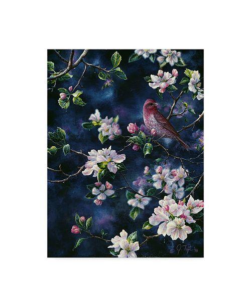 """Trademark Global Jeff Tift 'Bird' Canvas Art - 35"""" x 47"""""""