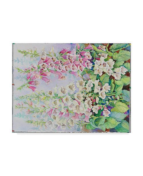 "Trademark Global Joanne Porter 'Summer Foxglove' Canvas Art - 24"" x 32"""