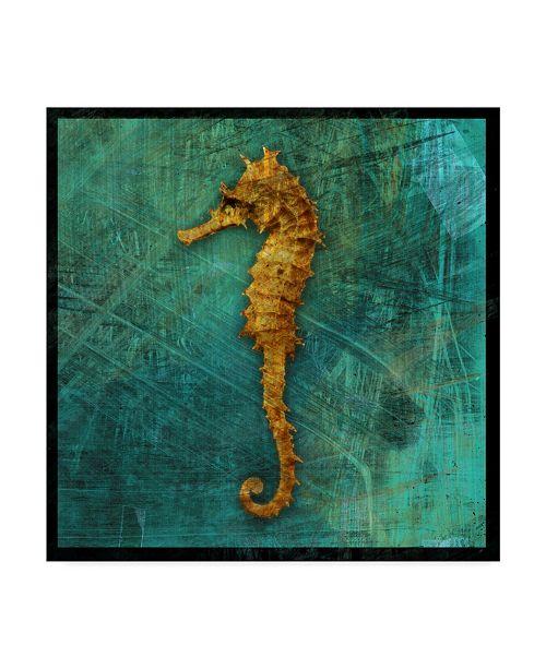 "Trademark Global John W. Golden 'Seahorse' Canvas Art - 24"" x 24"""