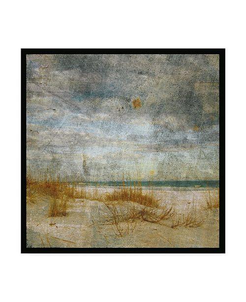 "Trademark Global John W. Golden 'Mason Boro Reeds' Canvas Art - 24"" x 24"""