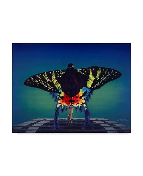 """Trademark Global Kirk Reinert 'Butterfly' Canvas Art - 35"""" x 47"""""""