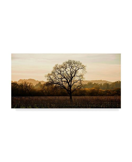 "Trademark Global Lance Kuehne 'Wine Country Winter' Canvas Art - 24"" x 47"""