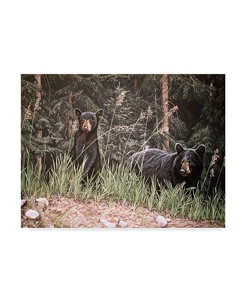 "Trademark Global Ron Parker 'Curious Cub' Canvas Art - 35"" x 47"""