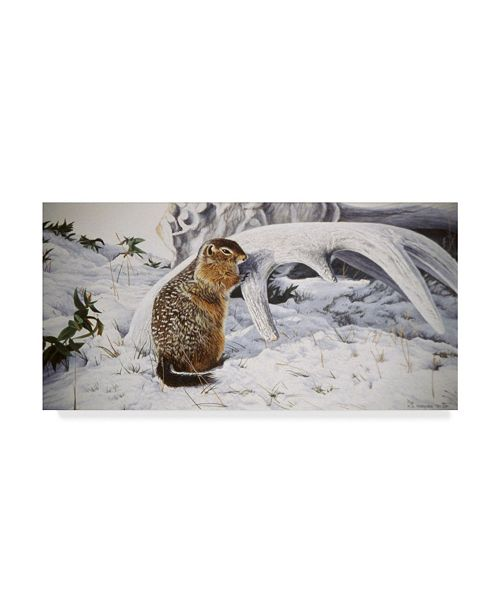 """Trademark Global Ron Parker 'Sic Sic And Moose Antler' Canvas Art - 24"""" x 47"""""""