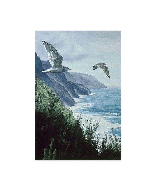 "Trademark Global Ron Parker 'Mew Gull' Canvas Art - 30"" x 47"""
