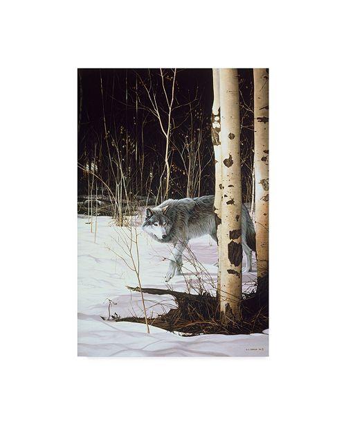 """Trademark Global Ron Parker 'Grey Wolf Aspen' Canvas Art - 22"""" x 32"""""""