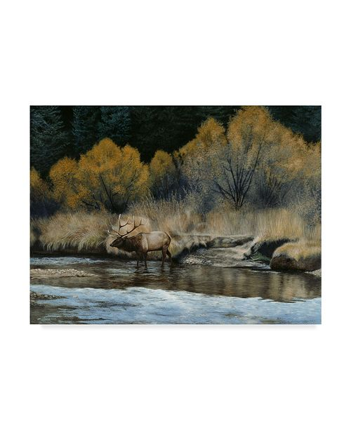 "Trademark Global Rusty Frentner 'Elk' Canvas Art - 24"" x 32"""
