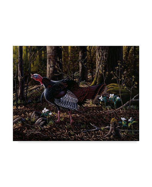 """Trademark Global Wilhelm Goebel 'Hillside Gobbler' Canvas Art - 35"""" x 47"""""""