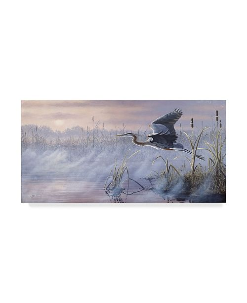 "Trademark Global Wilhelm Goebel 'Rising Marsh' Canvas Art - 24"" x 47"""