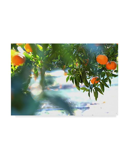 "Trademark Global Incredi 'Orange Tree Light' Canvas Art - 32"" x 22"""