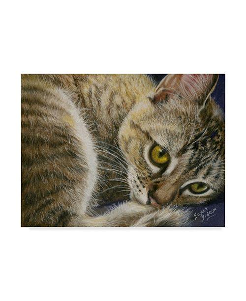 "Trademark Global Janet Pidoux 'Bright Eye Kitten' Canvas Art - 47"" x 35"""