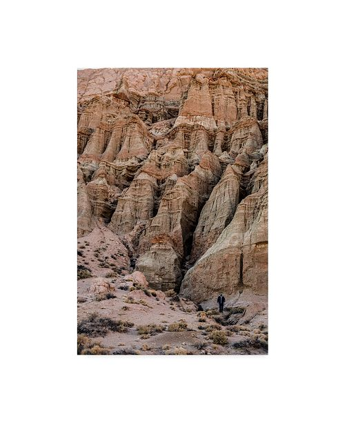 "Trademark Global Janice Sullivan 'Red Rocks I' Canvas Art - 30"" x 47"""