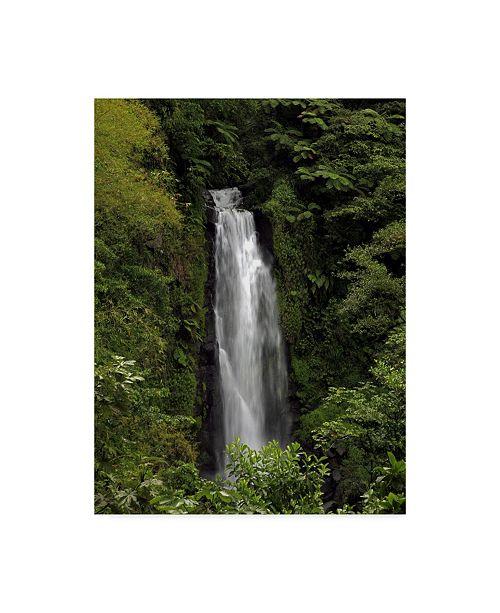 "Trademark Global J.D. Mcfarlan 'Jungle Falls' Canvas Art - 35"" x 47"""