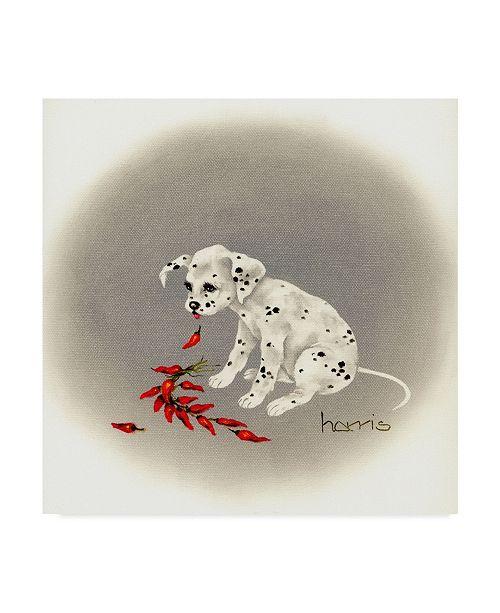 "Trademark Global Peggy Harris 'Dalmatian Chile Dog' Canvas Art - 35"" x 35"""