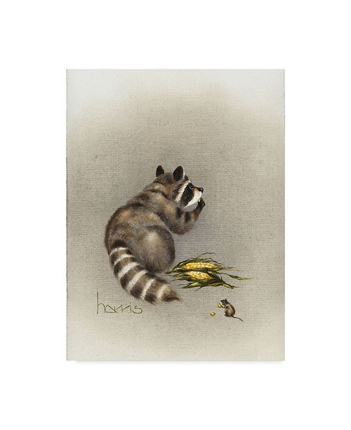 """Trademark Global Peggy Harris 'Cobs And Robbers' Canvas Art - 24"""" x 32"""""""