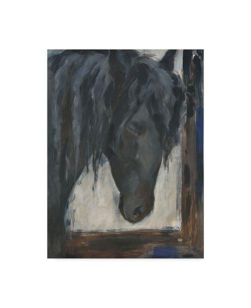 "Trademark Global Solveiga 'Hilandero' Canvas Art - 24"" x 32"""